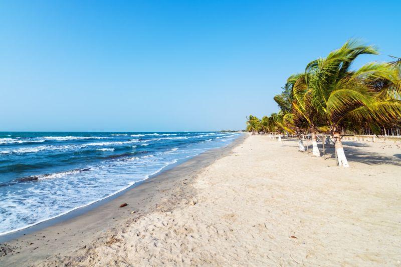 Playa con arena blanca y palmeras pequeñas