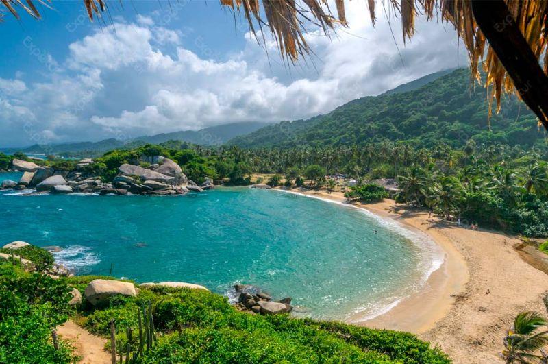 Playa semicircular con palmeras